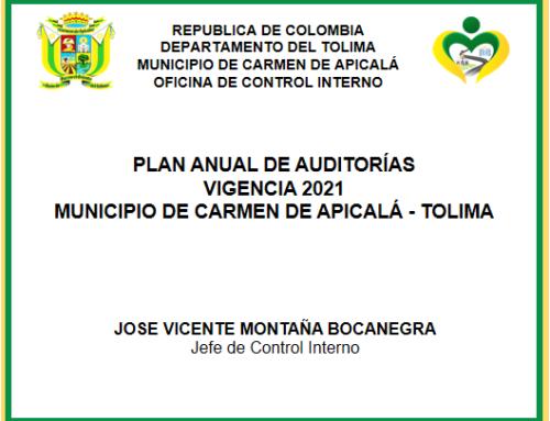 PLAN ANUAL DE AUDITORÍAS VIGENCIA 2021